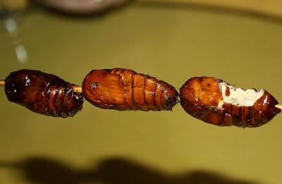 Fried grubworm