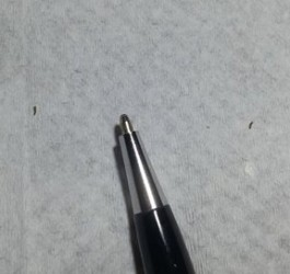 tiny larvae on desk and chair