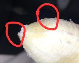 Reader Encounters Worms in Her Bananas