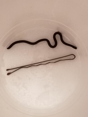 Beige, Rubber Band-like Creature with Triangular Head is a Young Snake